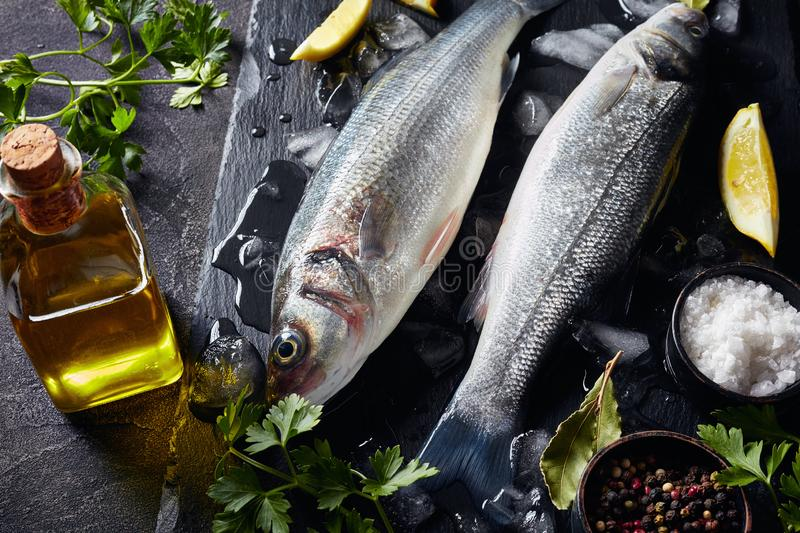 Close-up of two raw whole sea bass. Close-up of two fresh raw whole sea bass with lump ice, lemon slices, spices and herbs on a slate plate on a concrete table royalty free stock photo