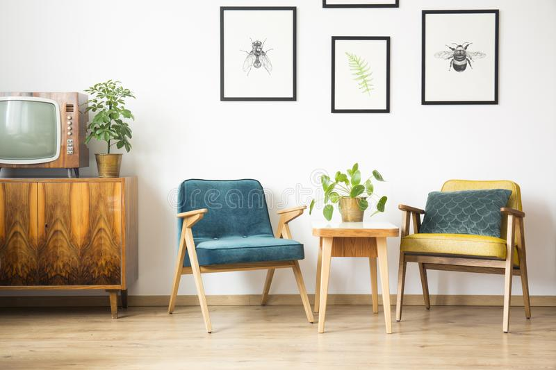 Download Close Up Of Two Vintage Armchairs Stock Photo   Image Of Living,  Plants