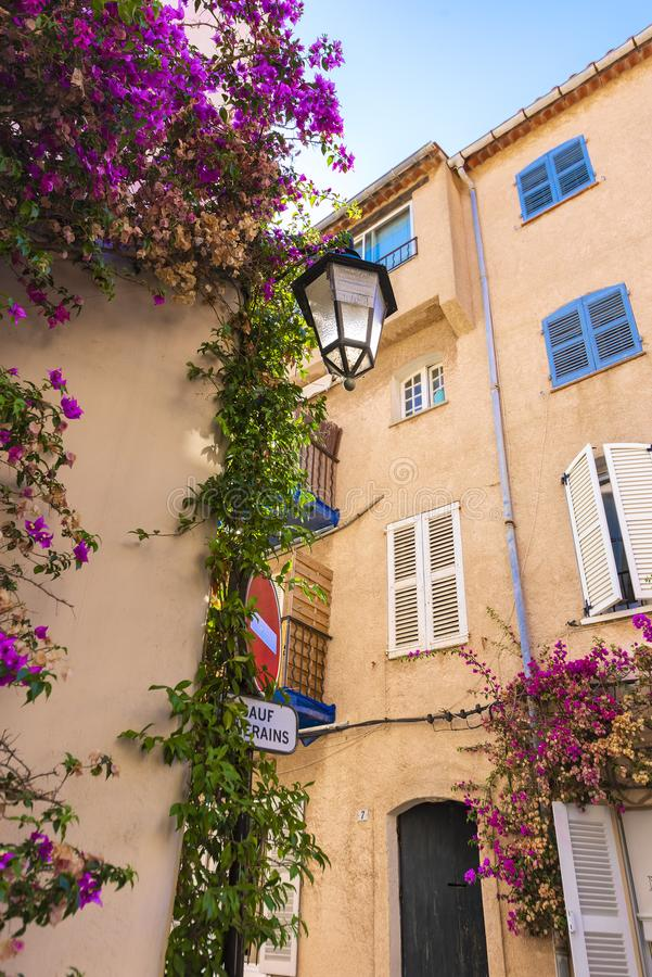 Close-up of a typical French Mediterranean corner, with its pink facades and buildings, tendrils with purple oliander flowers an o stock photo