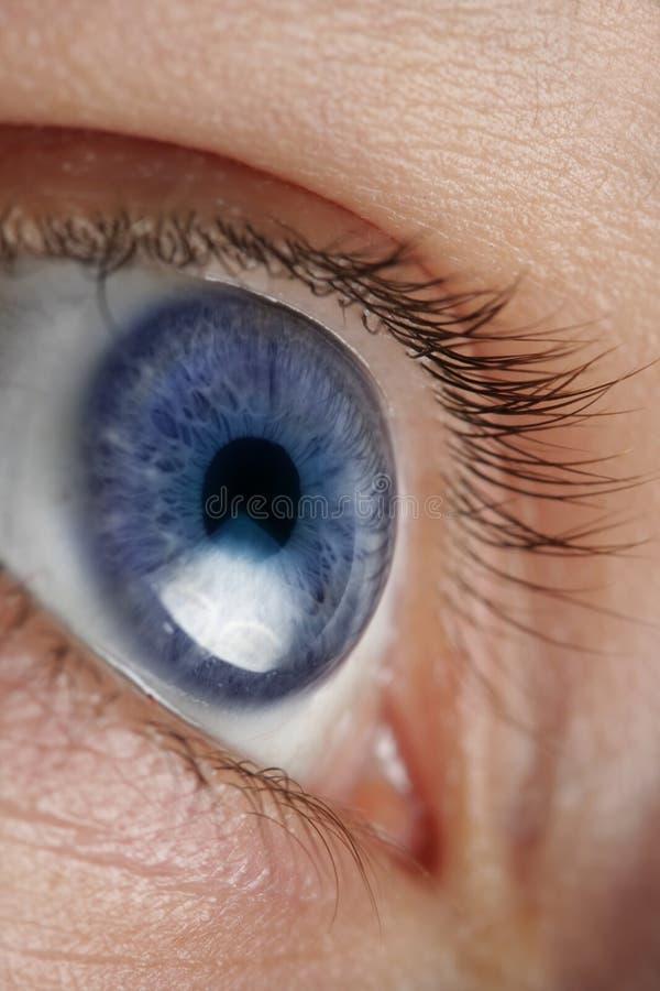 Close up um olho foto de stock