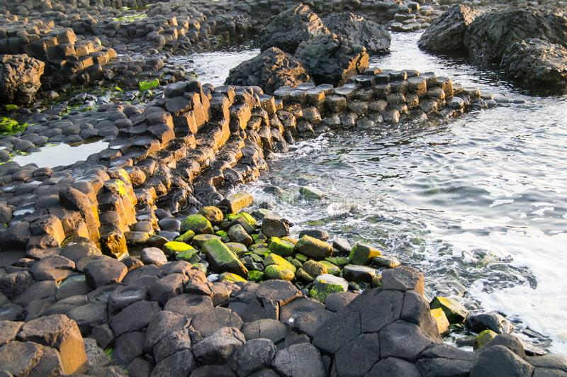 Close-up of unusual rock formations on the Giant`s Causeway, Northern Ireland. Showing the worn basalt rocks lit by summer evening sunlight royalty free stock image