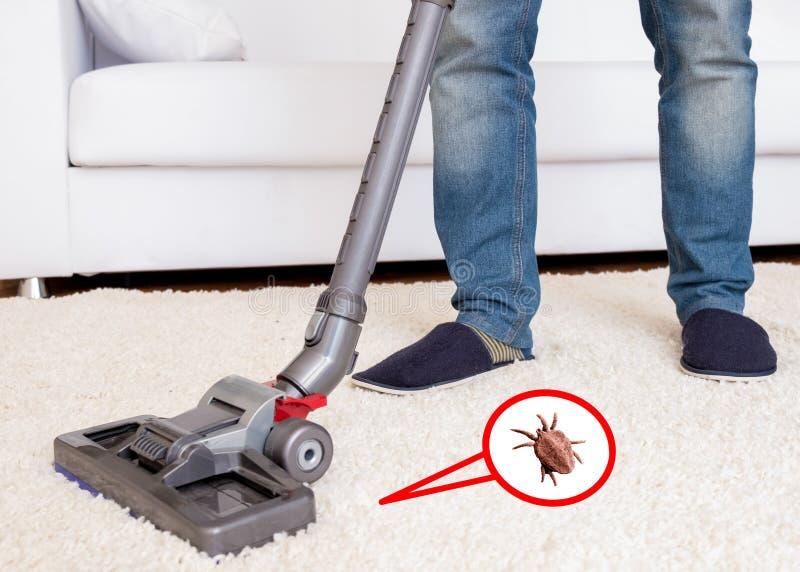 Vacuuming white carpet using the vacuum cleaner. Close up of vacuum cleaner cleaning dirty carpet stock photos