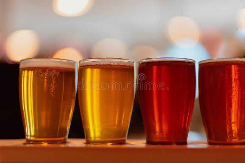 Close-up van biervlucht in het proeven van glazen stock fotografie