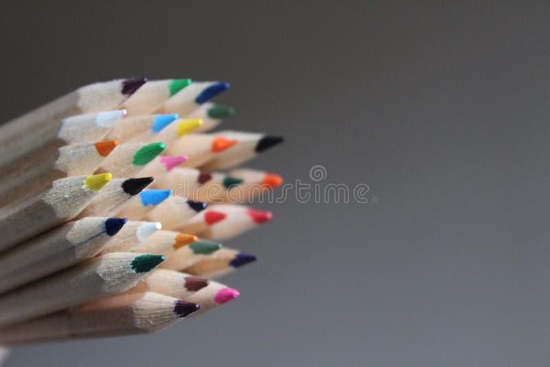 Close-up van de uiteinden van het potloodkleurpotlood stock foto's