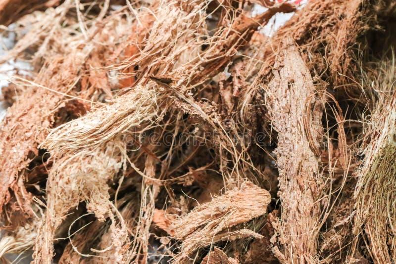 Close-up van Droge de kokosnotenschillen van de Kokosnoten spathe vezel royalty-vrije stock afbeelding