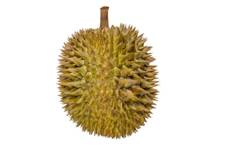 Close-up van durian die fruit op witte achtergrond wordt geïsoleerd stock afbeeldingen