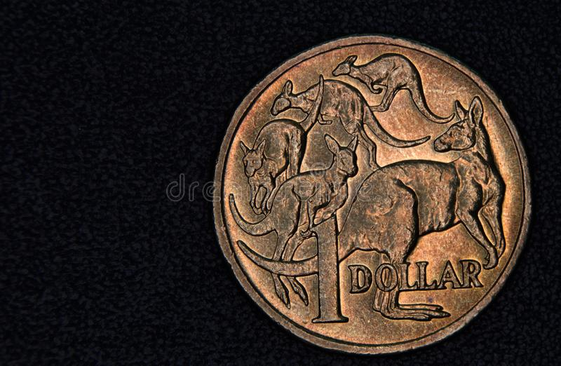 Close-up van een Australisch 1 dollarmuntstuk royalty-vrije stock fotografie