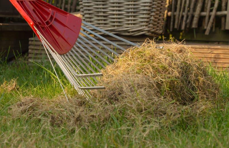 Close-up van een hark met rest van oud gras stock afbeeldingen
