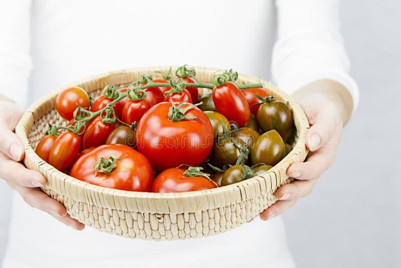 Close-up van een mandhoogtepunt van rijpe tomaten van diverse die rassen door een jonge vrouw worden gehouden stock foto
