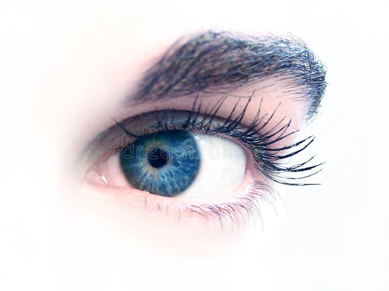 Close-up van een oog stock foto's