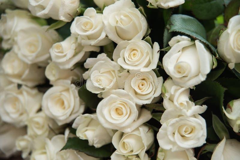 Close-up van een reusachtig boeket van witte rozen stock afbeelding