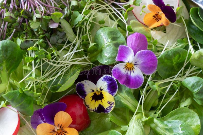 Close-up van een salade met eetbare bloemen en verse broccoli en boerenkool microgreens royalty-vrije stock fotografie