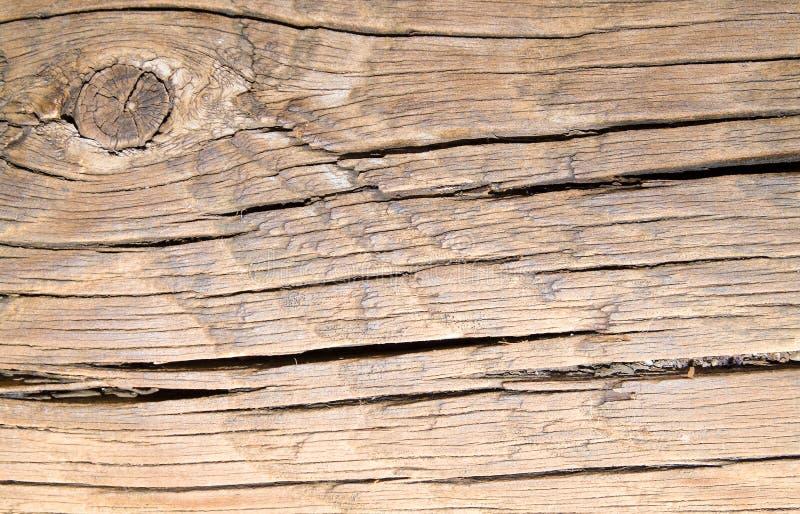 Close-up van een stuk van hout, achtergrond van stuk van boom, aard royalty-vrije stock afbeeldingen