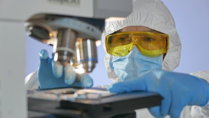Close-up van een wetenschapper wordt geschoten die glasplaatje met gevaarlijke bacteriën voor het onderzoeken voorbereiden onder royalty-vrije stock foto's