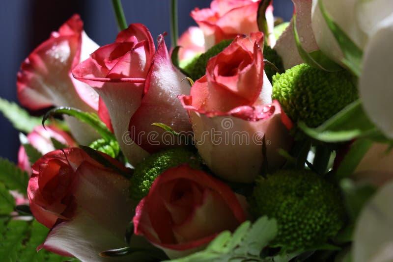 Close-up van Elegant boeket van roze met witte schaduwrozen in bloei stock afbeeldingen