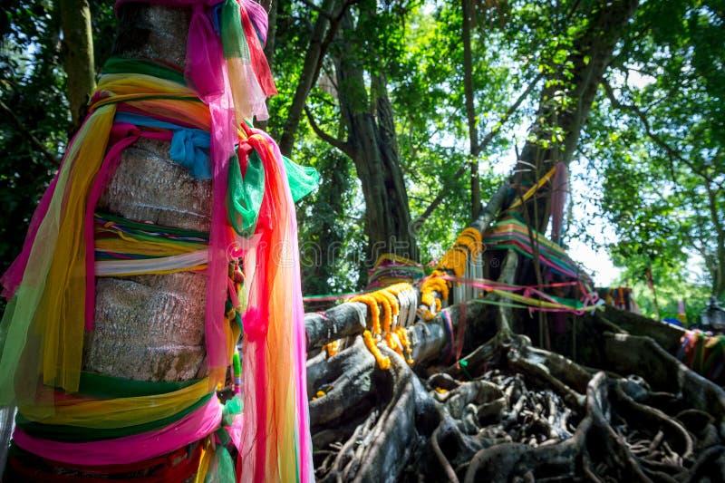 Close-up van gordijn kleurrijk op boom, traditionele reis stock afbeeldingen