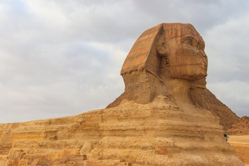 Close-up van Grote Sfinx van Giza in Kaïro, Egypte stock fotografie