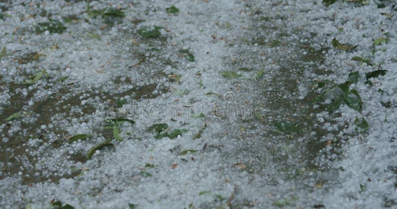 Close-up van hagelstenen die op de bestrating tijdens sterke hagelbui vallen royalty-vrije stock afbeelding
