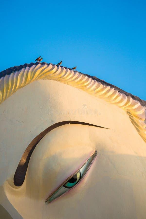 Close-up van het beeldhouwwerk van Boedha met vogels op hoofd stock foto