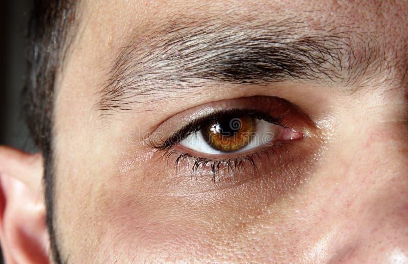 Close-up van het mannelijke oog royalty-vrije stock afbeelding