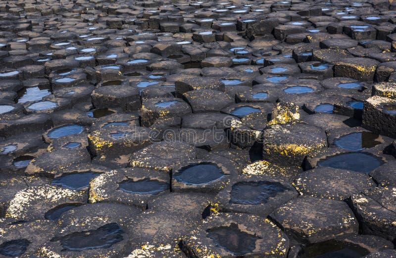 Close-up van hexagonale basaltkolommen van de Verhoogde weg van de Reus, Noord-Ierland stock afbeelding