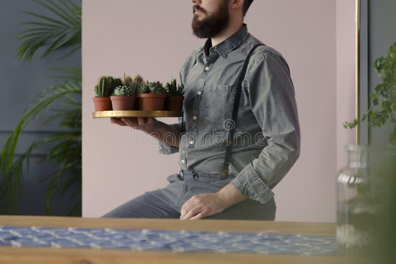 Close-up van hipster met baard die een gouden plaat met succule houden stock afbeeldingen