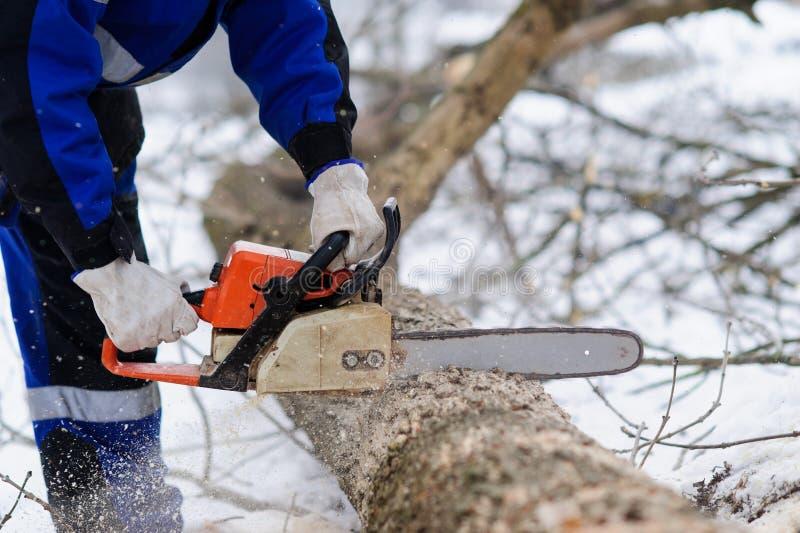 Close-up van houthakker die kettingzaag in motie, zaagselvlieg aan kanten zaagt royalty-vrije stock afbeeldingen