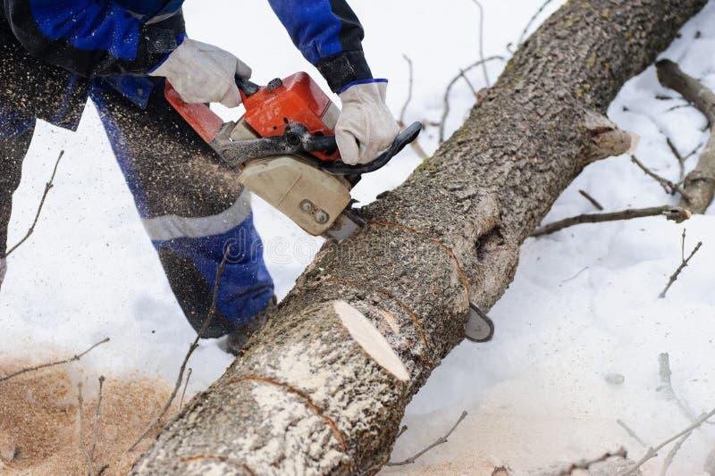 Close-up van houthakker die kettingzaag in motie, zaagselvlieg aan kanten zagen stock afbeelding