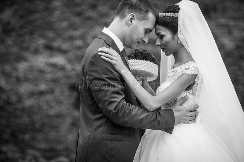 Close-up van jonggehuwde die valentynes in een parkwijnstokken backgroun koesteren stock afbeeldingen