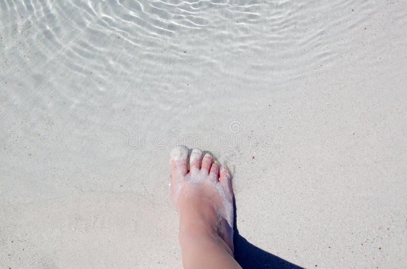 Close-up van juiste voet die in water stappen stock fotografie