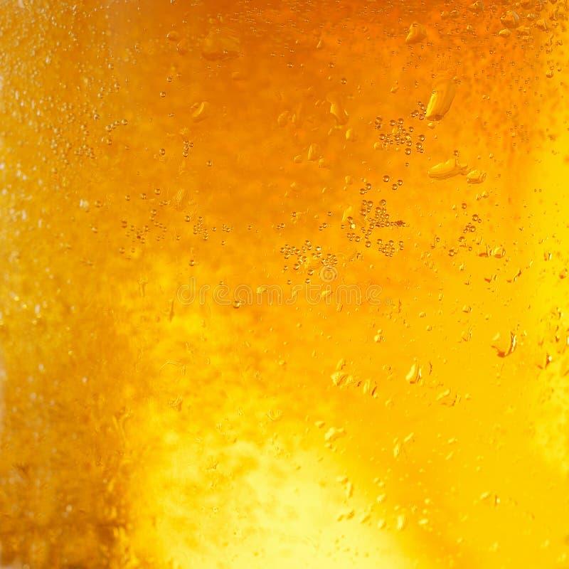 Close-up van licht bier in een glas stock foto's