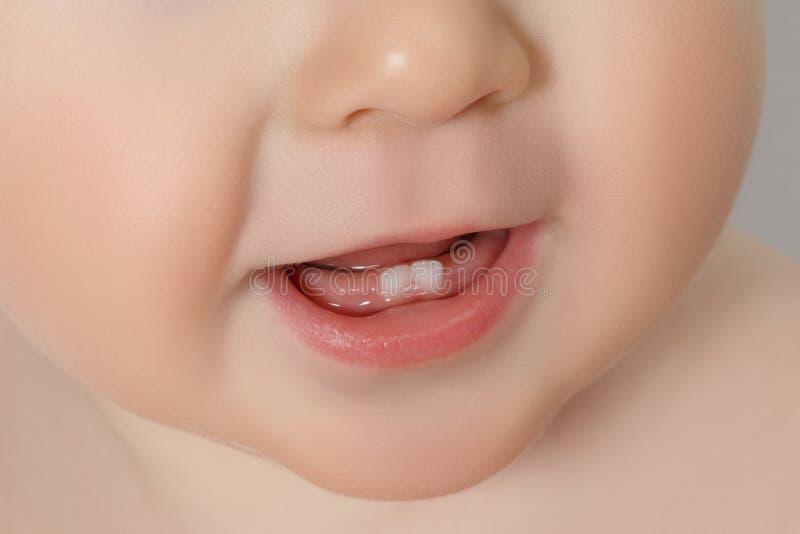 Close-up van melktanden stock fotografie