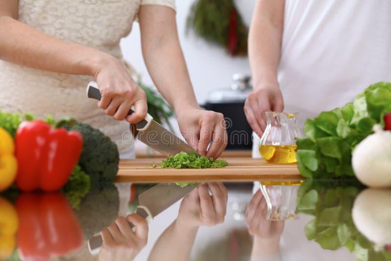 Close-up van Menselijke handen die in keuken koken Moeder en dochter of vrouwelijke het snijden twee groene salade of kruiden Gez royalty-vrije stock fotografie