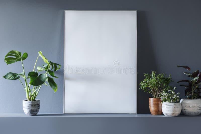 Close-up van model op lege witte affiche in grijze ruimte binnenlands w stock fotografie