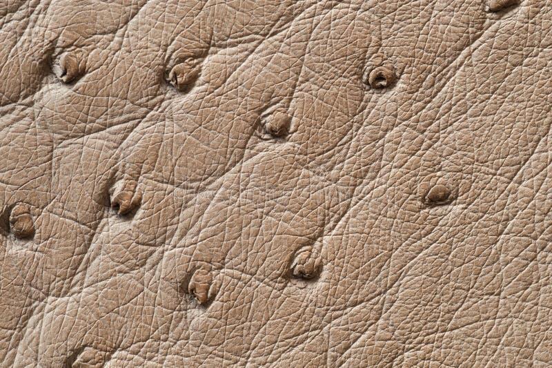 Close-up van naadloze beige leertextuur royalty-vrije stock foto's