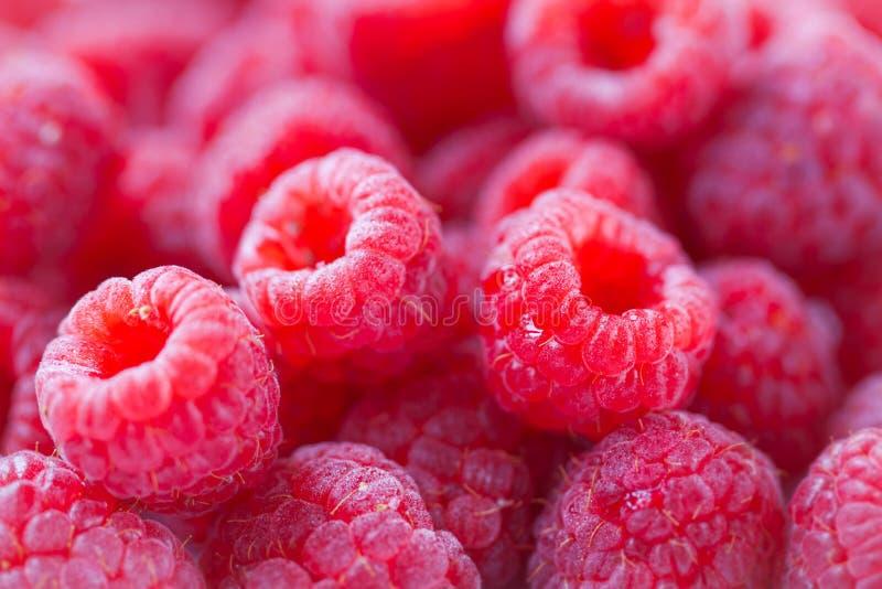 Close-up van natuurlijke smakelijke kleurrijke framboos met exemplaarruimte royalty-vrije stock fotografie