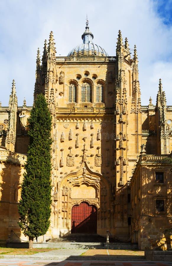 Close-up van Nieuwe Kathedraal van Salamanca stock afbeeldingen