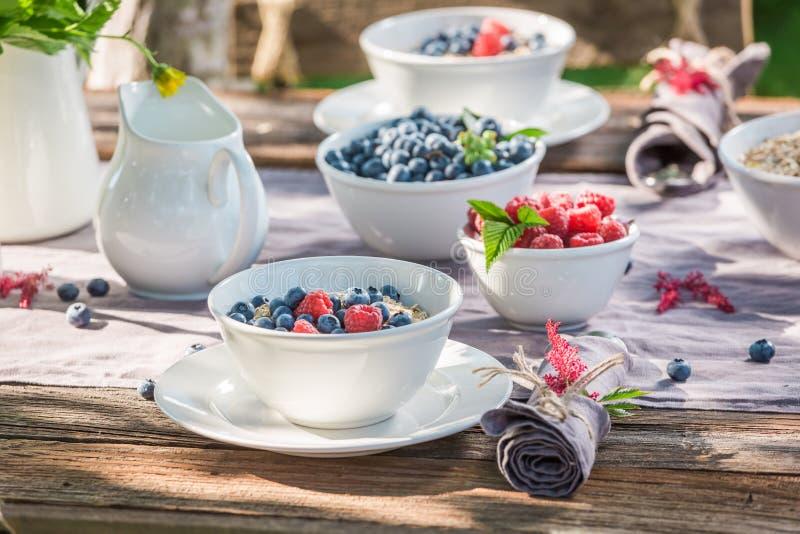 Close-up van ontbijt met frambozen en bosbessen in tuin royalty-vrije stock afbeelding