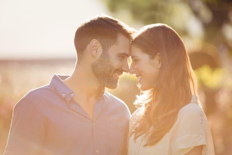 Close-up van paar het romancing royalty-vrije stock afbeeldingen