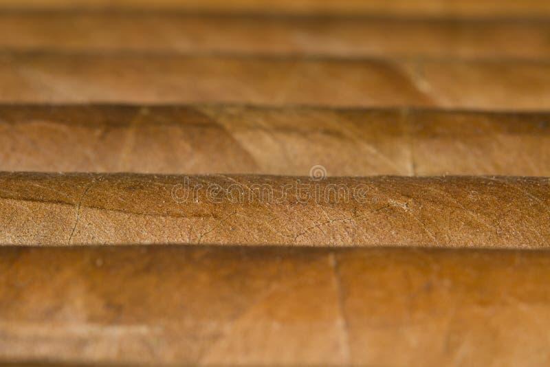 Download Close-up van Sigaren stock foto. Afbeelding bestaande uit life - 29508358