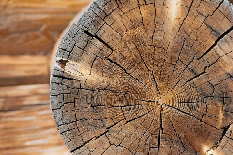 Close-up van transect van rond logboek met rollen en barsten en de onscherpe houten bouw royalty-vrije stock foto's