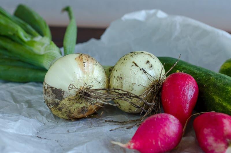 Close-up van vers geoogste groenten royalty-vrije stock foto's
