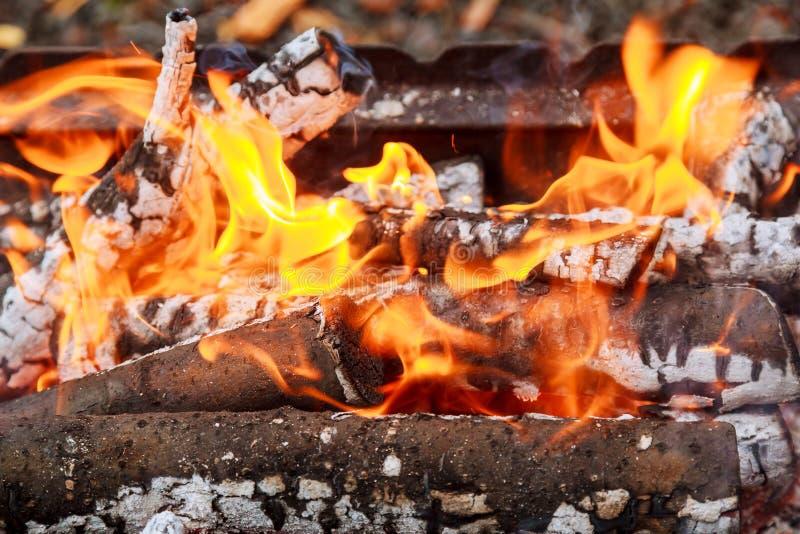 Close-up van Vlammen die op Zwarte Achtergrond, langzame motie branden stock afbeeldingen
