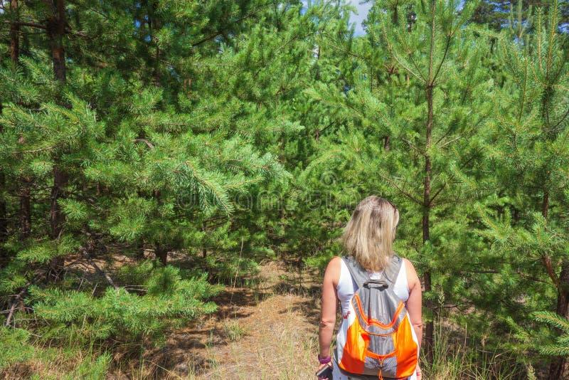 Close-up van vrouw met rugzak voor spar en pijnboombomen bosconcept actief levensstijl, wandeling en toerisme royalty-vrije stock afbeeldingen