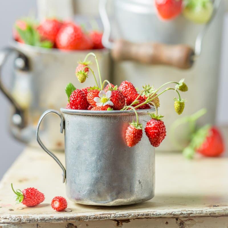 Close-up van zoete wilde aardbeien op de oude witte stoel stock foto