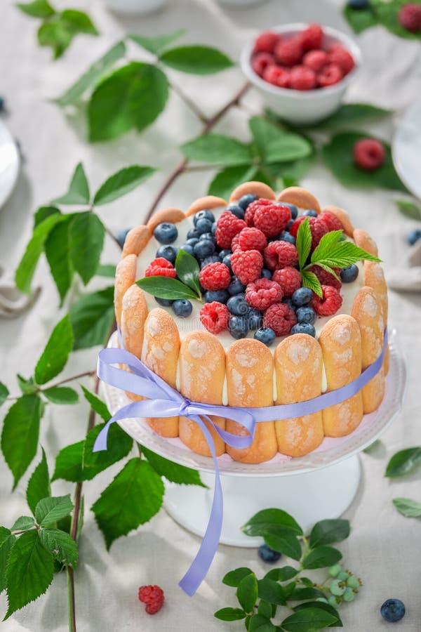 Close-up van zoete yoghurtcake met frambozen en bosbessen stock foto's