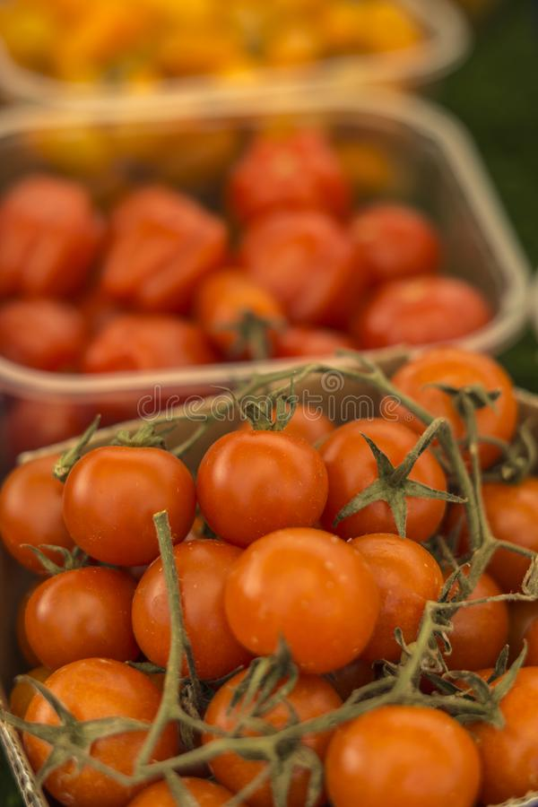 Close up of various types of little tomatoes.  royalty free stock photo