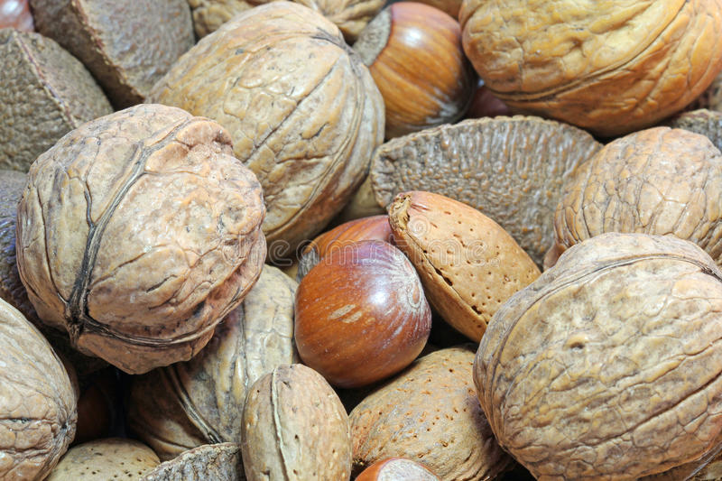 Close up of various uncracked nuts. royalty free stock photography