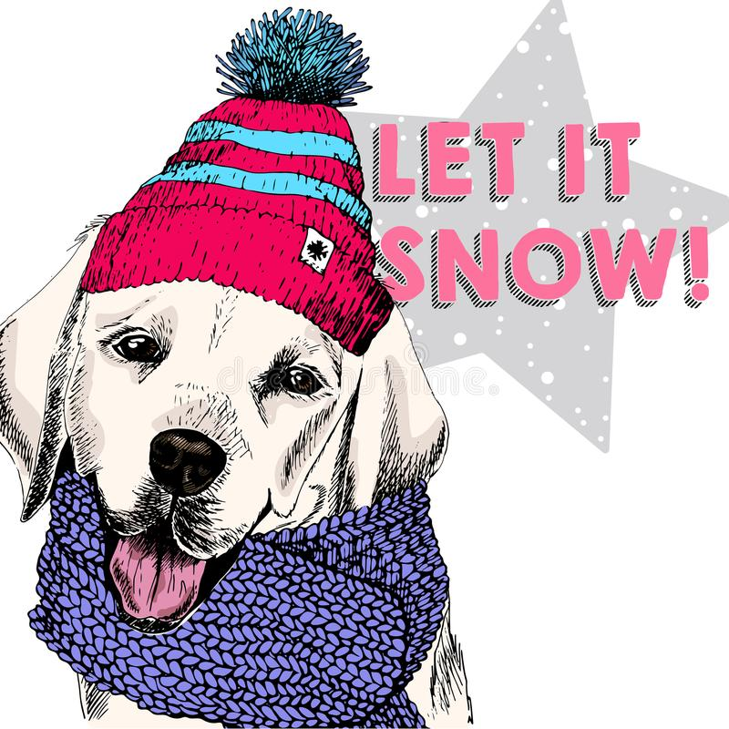 Close up vector portrait of Labrador retriever dog wearing beanie and scarf. Ski mode mood. Skecthed colored illustraion vector illustration