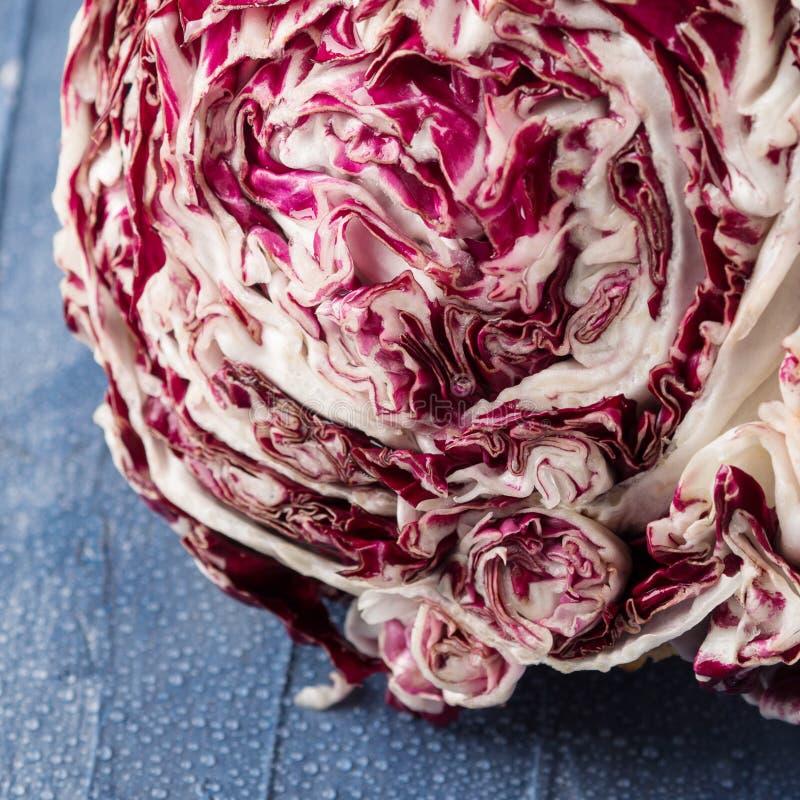 Close up vermelho da chicória do Radicchio imagem de stock